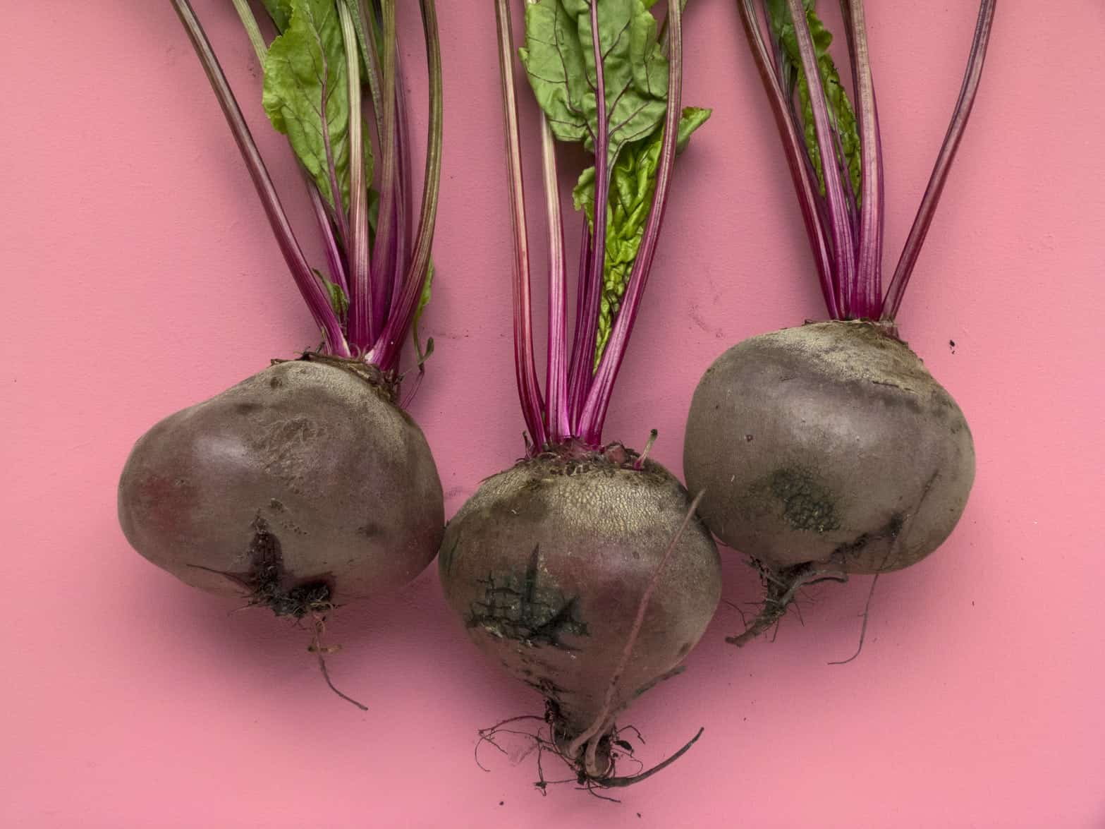 6-health-benefits-of-beetroot-powder-(and-how-to-choose-a-good-one)