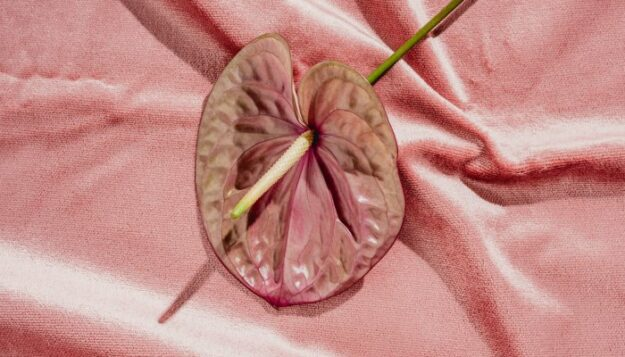wait,-your-vagina-can-be-dehydrated?-an-ob/gyn-shares-how-to-tell-+-what-to-do