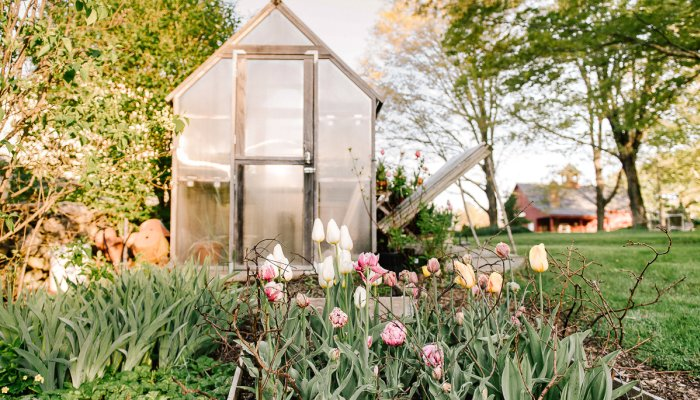 10-sustainable-gardening-techniques-that-let-nature-do-the-work-for-you