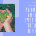 Environmental Volunteer Opportunities that Make a Difference | Ekaterina Fields