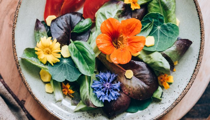 7-edible-flowers-that-belong-in-your-garden-(and-on-your-plate)