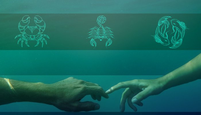 how-to-thrive-as-a-water-sign-(looking-at-you-cancer,-scorpio-&-pisces)