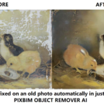 Restore Old Photos Using Artificial Intelligence