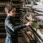 Why I Choose to Raise my Kids with Farm Animals