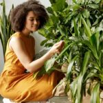The Biggest Houseplant Mistake People Always Make This Time Of Year