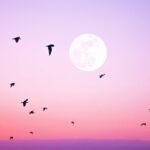 How To Approach October's Full Moon, Depending On Your Zodiac Sign